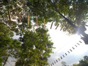 The Green Forest Resort - Bandung hotel